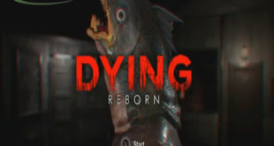 Dying Reborn PC Game full version Free Download